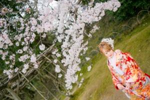 岡山倉敷で前撮り別撮りならNEMURAFILMS後楽園和装前撮り桜新婦様ソロショット
