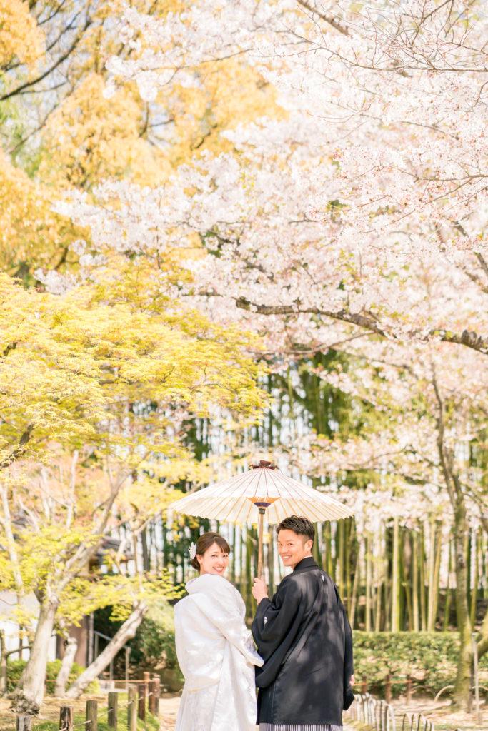 岡山後楽園・倉敷美観地区での桜前撮り 岡山後楽園・倉敷美観地区での桜前撮りの受付を開始いたしました!! 大人気のシーズンで、昨年、一昨年と1月下旬には、かなりのお日にちがご予約完売いたしました。 桜シーズンの前撮りをご検討中の新郎新婦様はお早めにお問い合わせください。 岡山市内・倉敷市内出張料金無料です。 ※土日祝日は休日料金として15,000円(税別)かかります。その他追加料金が発生することはございません。 ※各キャンペーン時期は、桜の開花や紅葉が色づく時期とは関係ございませんのでご注意ください。 岡山県の桜開花時期 岡山県の桜は、平年は3月29日、満開は4月6日と言われています。 2018年 開花の日は3月25日で、平年より4日早く、満開の日は3月28日で、平年より9日早かったです。 2017年 4月1日 2016年 3月26日 2015年 3月28日 岡山後楽園は、岡山市街の他の公園と比較してもやや遅いです!! 2019年のお写真 それでは、2019年の実際の 3月28日 この頃から後楽園の桜は写真に残る程度、開花いたしました。 毎年、園内より、園外の桜の方が、早く咲きます。 3月30日 3月31日 この日から園内の桜が写真に残る程度に咲き始めました。 4月1日 後楽園外の桜は満開に近いですね! 4月2日 園内の桜もだいぶ満開に近くなってまいりましたが、まだ6〜7分咲きといった程度でしょうか。 それでも綺麗ですね! 4月4日 後楽園内もモリモリになってきました! 後楽園の外の桜も満開に近いですね!! 4月6日 後楽園の内外で、もっとも遅く咲く桜、醍醐桜です! こちらの桜、昨年は、4月6日から17日まで咲いていました! 信じられないほど、遅くまで咲いている桜が後楽園にはあります!! ということで、4月7日〜17日のお写真は後編でのご紹介になります!!  岡山市内・倉敷市内出張料金無料です。 ※土日祝日は休日料金として15,000円(税別)かかります。その他追加料金が発生することはございません。 2019年11月9日〜12月15日の期間に撮影いただきましたお客様限定で、岡山後楽園での和装1点プランが78,000円(税別)!! 2020年1月11日〜3月15日の期間に撮影いただきましたお客様限定で、岡山後楽園での和装1点プランが78,000円(税別)!! 2020年3月19日〜4月19日の期間に撮影いただきましたお客様限定で、岡山後楽園での和装1点プランが78,000円(税別)!! ※各キャンペーンは早期受付期間が終了し次第、価格が変更になる場合がございます。 紅葉前撮りキャンペーンの受付を開始いたしました! 2020年新春キャンペーン前撮りキャンペーンの受付を開始いたしました! 2020年桜前撮りキャンペーンの受付を開始いたしました! 足袋や着物用の肌着など、お客様にご用意いただくものは一切ございません! 後楽園への撮影許可申請も弊社で行います!申請料金、新郎新婦様分の入場料金も弊社が負担させていただきます。 事前のご来店も不要!こちらより衣装を3着お選びいただきまして、撮影当日にご試着いただいて撮影に使用する衣装をお決めいただく流れとなっております。(打掛は全てフリーサイズのものを新婦様の体型に合わせて着付けて行きますので、ご安心ください。) リーズナブルに、手間なく、お気軽に岡山後楽園での和装前撮りを行なって頂けます! 前撮りに必要なものが全て含まれたプランです! ロケ地の2箇所目以降の追加、アルバムなどの有料オプションをご使用になられない場合は、追加料金は一切ございません。 前撮り ご予約時間は基本的には8時45分と13時00分の2枠となっております。 こちらからスケジュールをご確認いただきまして、お問い合わせください。 全てコミコミで78000円~という低予算で、しっかりと満足いただけるクオリティーの高いウェディングフォトを、責任持ってお撮りします。 ご予約お待ちしております! 足袋や着物用の肌着など、お客様にご用意いただくものは一切ございません! 後楽園への撮影許可申請も弊社で行います!申請料金、新郎新婦様分の入場料金も弊社が負担させていただきます。 事前のご来店も不要!こちらより衣装を3着お選びいただきまして、撮影当日にご試着いただいて撮影に使用する衣装をお決めいただく流れとなっております。(打掛は全てフリーサイズのものを新婦様の体型に合わせて着付けて行きますので、ご安心ください。) リーズナブルに、手間なく、お気軽に岡山後楽園での和装前撮りを行なって頂けます! 前撮りに必要なものが全て揃って、和装1点78000円(税別)と大変お安いお得な価格でご案内させていただきます。412