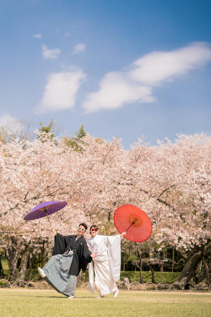 岡山後楽園・倉敷美観地区での桜前撮り 岡山後楽園・倉敷美観地区での桜前撮りの受付を開始いたしました!! 大人気のシーズンで、昨年、一昨年と1月下旬には、かなりのお日にちがご予約完売いたしました。 桜シーズンの前撮りをご検討中の新郎新婦様はお早めにお問い合わせください。 岡山市内・倉敷市内出張料金無料です。 ※土日祝日は休日料金として15,000円(税別)かかります。その他追加料金が発生することはございません。 ※各キャンペーン時期は、桜の開花や紅葉が色づく時期とは関係ございませんのでご注意ください。 岡山県の桜開花時期 岡山県の桜は、平年は3月29日、満開は4月6日と言われています。 2018年 開花の日は3月25日で、平年より4日早く、満開の日は3月28日で、平年より9日早かったです。 2017年 4月1日 2016年 3月26日 2015年 3月28日 岡山後楽園は、岡山市街の他の公園と比較してもやや遅いです!! 2019年のお写真 それでは、2019年の実際の 3月28日 この頃から後楽園の桜は写真に残る程度、開花いたしました。 毎年、園内より、園外の桜の方が、早く咲きます。 3月30日 3月31日 この日から園内の桜が写真に残る程度に咲き始めました。 4月1日 後楽園外の桜は満開に近いですね! 4月2日 園内の桜もだいぶ満開に近くなってまいりましたが、まだ6〜7分咲きといった程度でしょうか。 それでも綺麗ですね! 4月4日 後楽園内もモリモリになってきました! 後楽園の外の桜も満開に近いですね!! 4月6日 後楽園の内外で、もっとも遅く咲く桜、醍醐桜です! こちらの桜、昨年は、4月6日から17日まで咲いていました! 信じられないほど、遅くまで咲いている桜が後楽園にはあります!! ということで、4月7日〜17日のお写真は後編でのご紹介になります!!  岡山市内・倉敷市内出張料金無料です。 ※土日祝日は休日料金として15,000円(税別)かかります。その他追加料金が発生することはございません。 2019年11月9日〜12月15日の期間に撮影いただきましたお客様限定で、岡山後楽園での和装1点プランが78,000円(税別)!! 2020年1月11日〜3月15日の期間に撮影いただきましたお客様限定で、岡山後楽園での和装1点プランが78,000円(税別)!! 2020年3月19日〜4月19日の期間に撮影いただきましたお客様限定で、岡山後楽園での和装1点プランが78,000円(税別)!! ※各キャンペーンは早期受付期間が終了し次第、価格が変更になる場合がございます。 紅葉前撮りキャンペーンの受付を開始いたしました! 2020年新春キャンペーン前撮りキャンペーンの受付を開始いたしました! 2020年桜前撮りキャンペーンの受付を開始いたしました! 足袋や着物用の肌着など、お客様にご用意いただくものは一切ございません! 後楽園への撮影許可申請も弊社で行います!申請料金、新郎新婦様分の入場料金も弊社が負担させていただきます。 事前のご来店も不要!こちらより衣装を3着お選びいただきまして、撮影当日にご試着いただいて撮影に使用する衣装をお決めいただく流れとなっております。(打掛は全てフリーサイズのものを新婦様の体型に合わせて着付けて行きますので、ご安心ください。) リーズナブルに、手間なく、お気軽に岡山後楽園での和装前撮りを行なって頂けます! 前撮りに必要なものが全て含まれたプランです! ロケ地の2箇所目以降の追加、アルバムなどの有料オプションをご使用になられない場合は、追加料金は一切ございません。 前撮り ご予約時間は基本的には8時45分と13時00分の2枠となっております。 こちらからスケジュールをご確認いただきまして、お問い合わせください。 全てコミコミで78000円~という低予算で、しっかりと満足いただけるクオリティーの高いウェディングフォトを、責任持ってお撮りします。 ご予約お待ちしております! 足袋や着物用の肌着など、お客様にご用意いただくものは一切ございません! 後楽園への撮影許可申請も弊社で行います!申請料金、新郎新婦様分の入場料金も弊社が負担させていただきます。 事前のご来店も不要!こちらより衣装を3着お選びいただきまして、撮影当日にご試着いただいて撮影に使用する衣装をお決めいただく流れとなっております。(打掛は全てフリーサイズのものを新婦様の体型に合わせて着付けて行きますので、ご安心ください。) リーズナブルに、手間なく、お気軽に岡山後楽園での和装前撮りを行なって頂けます! 前撮りに必要なものが全て揃って、和装1点78000円(税別)と大変お安いお得な価格でご案内させていただきます。4123