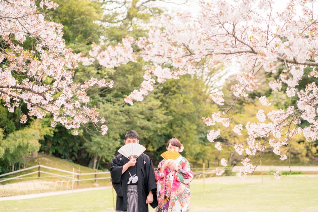 岡山後楽園・倉敷美観地区での桜前撮り 岡山後楽園・倉敷美観地区での桜前撮りの受付を開始いたしました!! 大人気のシーズンで、昨年、一昨年と1月下旬には、かなりのお日にちがご予約完売いたしました。 桜シーズンの前撮りをご検討中の新郎新婦様はお早めにお問い合わせください。 岡山市内・倉敷市内出張料金無料です。 ※土日祝日は休日料金として15,000円(税別)かかります。その他追加料金が発生することはございません。 ※各キャンペーン時期は、桜の開花や紅葉が色づく時期とは関係ございませんのでご注意ください。 岡山県の桜開花時期 岡山県の桜は、平年は3月29日、満開は4月6日と言われています。 2018年 開花の日は3月25日で、平年より4日早く、満開の日は3月28日で、平年より9日早かったです。 2017年 4月1日 2016年 3月26日 2015年 3月28日 岡山後楽園は、岡山市街の他の公園と比較してもやや遅いです!! 2019年のお写真 それでは、2019年の実際の 3月28日 この頃から後楽園の桜は写真に残る程度、開花いたしました。 毎年、園内より、園外の桜の方が、早く咲きます。 3月30日 3月31日 この日から園内の桜が写真に残る程度に咲き始めました。 4月1日 後楽園外の桜は満開に近いですね! 4月2日 園内の桜もだいぶ満開に近くなってまいりましたが、まだ6〜7分咲きといった程度でしょうか。 それでも綺麗ですね! 4月4日 後楽園内もモリモリになってきました! 後楽園の外の桜も満開に近いですね!! 4月6日 後楽園の内外で、もっとも遅く咲く桜、醍醐桜です! こちらの桜、昨年は、4月6日から17日まで咲いていました! 信じられないほど、遅くまで咲いている桜が後楽園にはあります!! ということで、4月7日〜17日のお写真は後編でのご紹介になります!!  岡山市内・倉敷市内出張料金無料です。 ※土日祝日は休日料金として15,000円(税別)かかります。その他追加料金が発生することはございません。 2019年11月9日〜12月15日の期間に撮影いただきましたお客様限定で、岡山後楽園での和装1点プランが78,000円(税別)!! 2020年1月11日〜3月15日の期間に撮影いただきましたお客様限定で、岡山後楽園での和装1点プランが78,000円(税別)!! 2020年3月19日〜4月19日の期間に撮影いただきましたお客様限定で、岡山後楽園での和装1点プランが78,000円(税別)!! ※各キャンペーンは早期受付期間が終了し次第、価格が変更になる場合がございます。 紅葉前撮りキャンペーンの受付を開始いたしました! 2020年新春キャンペーン前撮りキャンペーンの受付を開始いたしました! 2020年桜前撮りキャンペーンの受付を開始いたしました! 足袋や着物用の肌着など、お客様にご用意いただくものは一切ございません! 後楽園への撮影許可申請も弊社で行います!申請料金、新郎新婦様分の入場料金も弊社が負担させていただきます。 事前のご来店も不要!こちらより衣装を3着お選びいただきまして、撮影当日にご試着いただいて撮影に使用する衣装をお決めいただく流れとなっております。(打掛は全てフリーサイズのものを新婦様の体型に合わせて着付けて行きますので、ご安心ください。) リーズナブルに、手間なく、お気軽に岡山後楽園での和装前撮りを行なって頂けます! 前撮りに必要なものが全て含まれたプランです! ロケ地の2箇所目以降の追加、アルバムなどの有料オプションをご使用になられない場合は、追加料金は一切ございません。 前撮り ご予約時間は基本的には8時45分と13時00分の2枠となっております。 こちらからスケジュールをご確認いただきまして、お問い合わせください。 全てコミコミで78000円~という低予算で、しっかりと満足いただけるクオリティーの高いウェディングフォトを、責任持ってお撮りします。 ご予約お待ちしております! 足袋や着物用の肌着など、お客様にご用意いただくものは一切ございません! 後楽園への撮影許可申請も弊社で行います!申請料金、新郎新婦様分の入場料金も弊社が負担させていただきます。 事前のご来店も不要!こちらより衣装を3着お選びいただきまして、撮影当日にご試着いただいて撮影に使用する衣装をお決めいただく流れとなっております。(打掛は全てフリーサイズのものを新婦様の体型に合わせて着付けて行きますので、ご安心ください。) リーズナブルに、手間なく、お気軽に岡山後楽園での和装前撮りを行なって頂けます! 前撮りに必要なものが全て揃って、和装1点78000円(税別)と大変お安いお得な価格でご案内させていただきます。4133