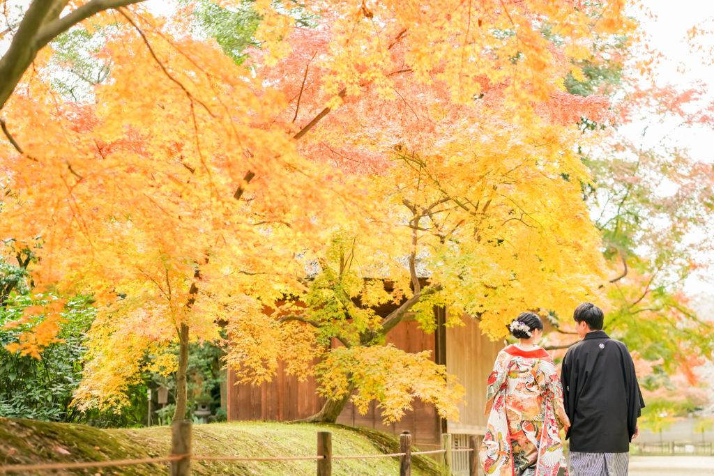 岡山後楽園・倉敷美観地区での桜前撮り 岡山後楽園・倉敷美観地区での桜前撮りの受付を開始いたしました!! 大人気のシーズンで、昨年、一昨年と1月下旬には、かなりのお日にちがご予約完売いたしました。 桜シーズンの前撮りをご検討中の新郎新婦様はお早めにお問い合わせください。 岡山市内・倉敷市内出張料金無料です。 ※土日祝日は休日料金として15,000円(税別)かかります。その他追加料金が発生することはございません。 ※各キャンペーン時期は、桜の開花や紅葉が色づく時期とは関係ございませんのでご注意ください。 岡山県の桜開花時期 岡山県の桜は、平年は3月29日、満開は4月6日と言われています。 2018年 開花の日は3月25日で、平年より4日早く、満開の日は3月28日で、平年より9日早かったです。 2017年 4月1日 2016年 3月26日 2015年 3月28日 岡山後楽園は、岡山市街の他の公園と比較してもやや遅いです!! 2019年のお写真 それでは、2019年の実際の 3月28日 この頃から後楽園の桜は写真に残る程度、開花いたしました。 毎年、園内より、園外の桜の方が、早く咲きます。 3月30日 3月31日 この日から園内の桜が写真に残る程度に咲き始めました。 4月1日 後楽園外の桜は満開に近いですね! 4月2日 園内の桜もだいぶ満開に近くなってまいりましたが、まだ6〜7分咲きといった程度でしょうか。 それでも綺麗ですね! 4月4日 後楽園内もモリモリになってきました! 後楽園の外の桜も満開に近いですね!! 4月6日 後楽園の内外で、もっとも遅く咲く桜、醍醐桜です! こちらの桜、昨年は、4月6日から17日まで咲いていました! 信じられないほど、遅くまで咲いている桜が後楽園にはあります!! ということで、4月7日〜17日のお写真は後編でのご紹介になります!!  岡山市内・倉敷市内出張料金無料です。 ※土日祝日は休日料金として15,000円(税別)かかります。その他追加料金が発生することはございません。 2019年11月9日〜12月15日の期間に撮影いただきましたお客様限定で、岡山後楽園での和装1点プランが78,000円(税別)!! 2020年1月11日〜3月15日の期間に撮影いただきましたお客様限定で、岡山後楽園での和装1点プランが78,000円(税別)!! 2020年3月19日〜4月19日の期間に撮影いただきましたお客様限定で、岡山後楽園での和装1点プランが78,000円(税別)!! ※各キャンペーンは早期受付期間が終了し次第、価格が変更になる場合がございます。 紅葉前撮りキャンペーンの受付を開始いたしました! 2020年新春キャンペーン前撮りキャンペーンの受付を開始いたしました! 2020年桜前撮りキャンペーンの受付を開始いたしました! 足袋や着物用の肌着など、お客様にご用意いただくものは一切ございません! 後楽園への撮影許可申請も弊社で行います!申請料金、新郎新婦様分の入場料金も弊社が負担させていただきます。 事前のご来店も不要!こちらより衣装を3着お選びいただきまして、撮影当日にご試着いただいて撮影に使用する衣装をお決めいただく流れとなっております。(打掛は全てフリーサイズのものを新婦様の体型に合わせて着付けて行きますので、ご安心ください。) リーズナブルに、手間なく、お気軽に岡山後楽園での和装前撮りを行なって頂けます! 前撮りに必要なものが全て含まれたプランです! ロケ地の2箇所目以降の追加、アルバムなどの有料オプションをご使用になられない場合は、追加料金は一切ございません。 前撮り ご予約時間は基本的には8時45分と13時00分の2枠となっております。 こちらからスケジュールをご確認いただきまして、お問い合わせください。 全てコミコミで78000円~という低予算で、しっかりと満足いただけるクオリティーの高いウェディングフォトを、責任持ってお撮りします。 ご予約お待ちしております! 足袋や着物用の肌着など、お客様にご用意いただくものは一切ございません! 後楽園への撮影許可申請も弊社で行います!申請料金、新郎新婦様分の入場料金も弊社が負担させていただきます。 事前のご来店も不要!こちらより衣装を3着お選びいただきまして、撮影当日にご試着いただいて撮影に使用する衣装をお決めいただく流れとなっております。(打掛は全てフリーサイズのものを新婦様の体型に合わせて着付けて行きますので、ご安心ください。) リーズナブルに、手間なく、お気軽に岡山後楽園での和装前撮りを行なって頂けます! 前撮りに必要なものが全て揃って、和装1点78000円(税別)と大変お安いお得な価格でご案内させていただきます。4184