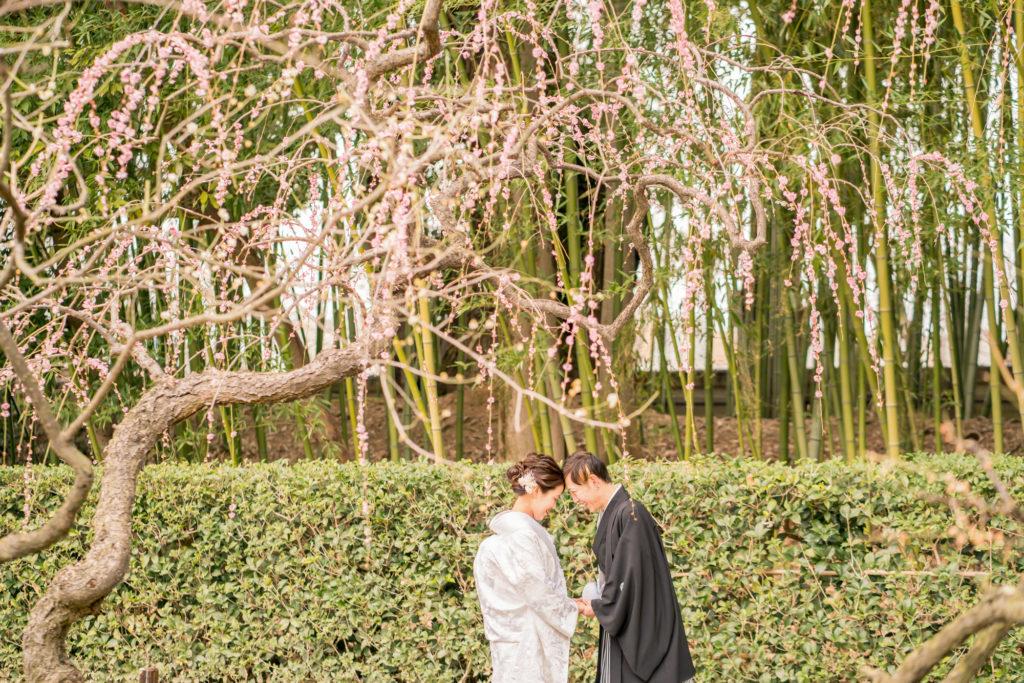 岡山前撮りの梅紹介写真。前撮りの時期をご検討中の方ご参考ください。NEMURAFILMS6