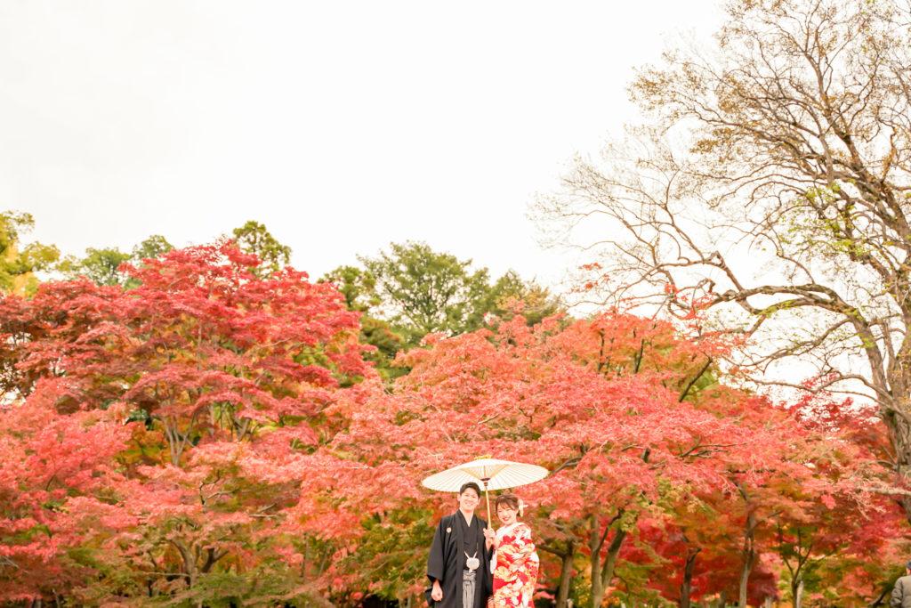 岡山前撮りネムラフィルムズお得で人気な紅葉前撮り受付中!写真が苦手な新郎新婦様カップル様へポイントと注意点