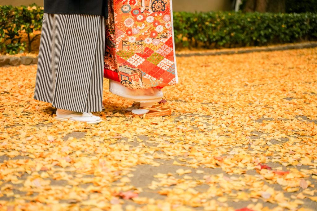 岡山前撮りネムラフィルムズお得で人気な紅葉前撮り受付中!特別キャンペーンアルバムプレゼント 中!651256