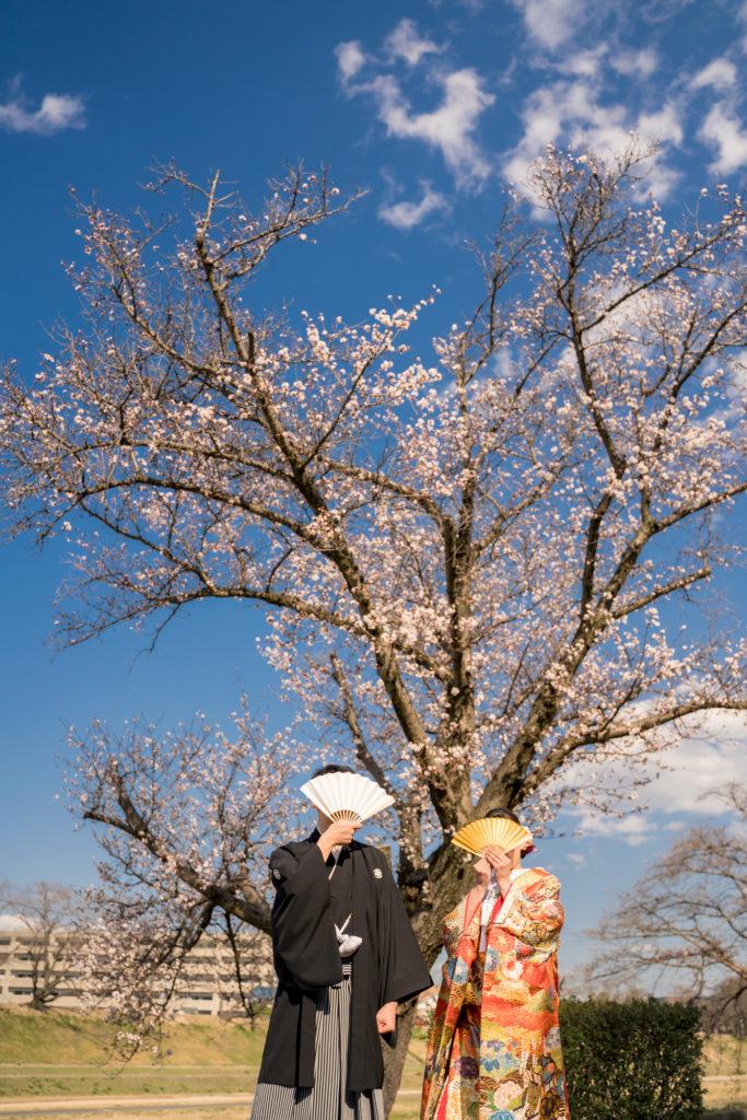 前撮り岡山フォトウエディング和装ロケ後楽園倉敷美観地区お得な桜前撮りキャンペーン和装2点でアルバムプレゼント季節ごとのお写真今年最初の桜